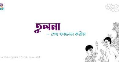 তুলনা - শেখ ফজলল করীম