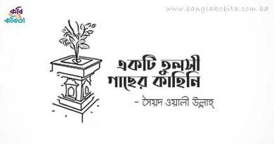 একটি তুলসী গাছের কাহিনি - সৈয়দ ওয়ালীউল্লাহ্